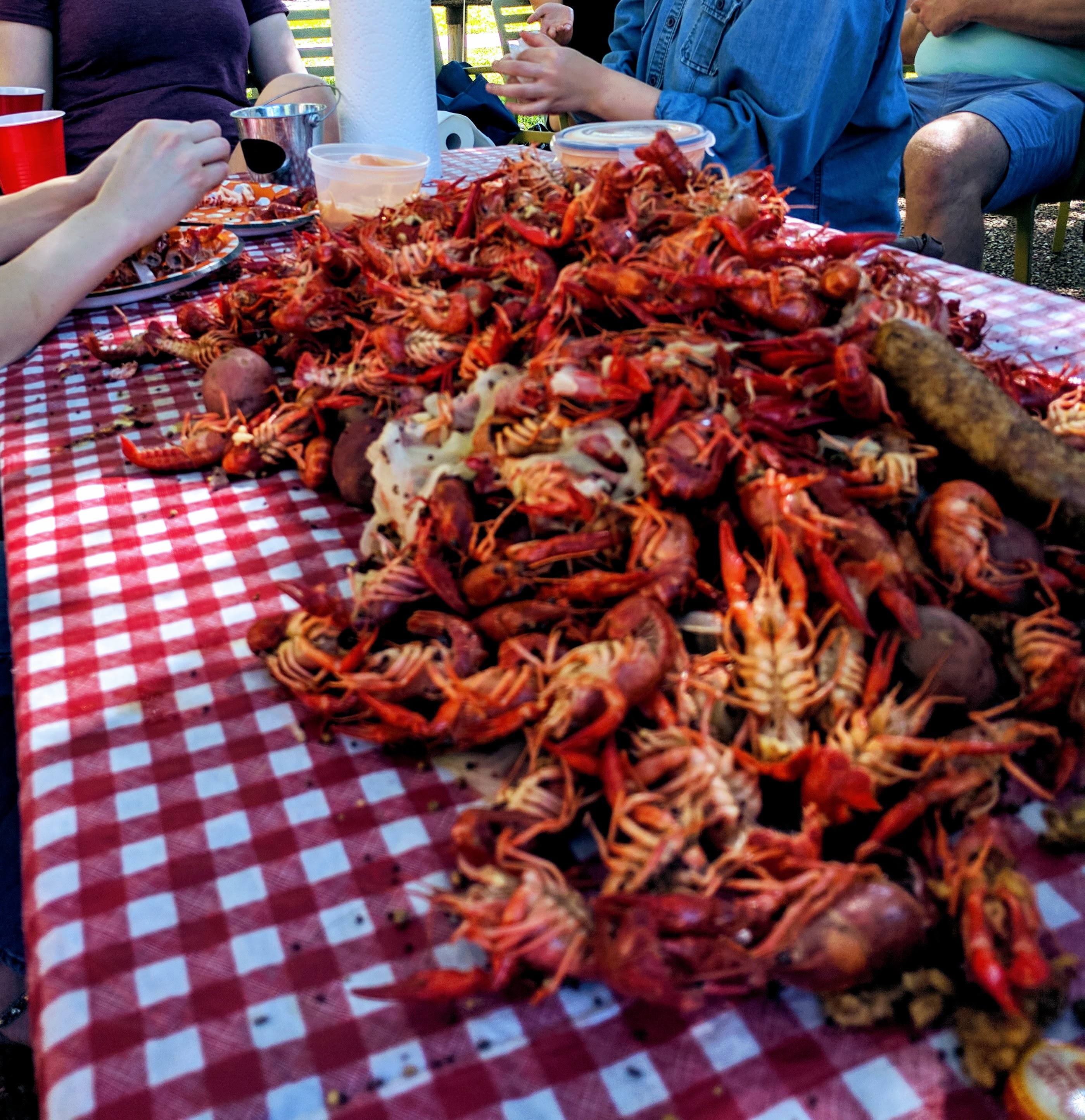 Picnic table of boiled crawfish